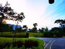 清楚的天空和绿色公园 免版税库存图片