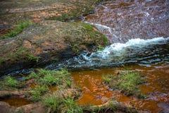 清楚的小河流动的水 免版税库存图片