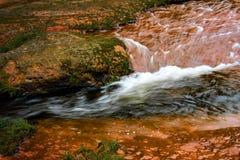 清楚的小河流动的水 免版税库存照片