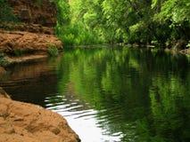 清楚的小河漏洞游泳 库存照片