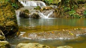 清楚的水流量下来落下在热带雨林的waterall急流 股票录像