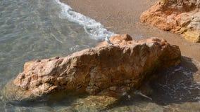 清楚的海峭壁和海鸥 股票视频