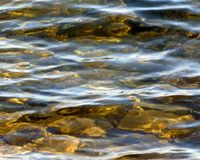 清楚的湖表面上的软的波纹浇灌 免版税库存图片