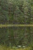 清楚的湖 免版税库存照片