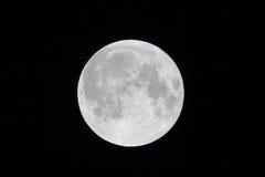 清楚的满月晚上 库存图片