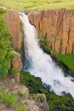 清楚的科罗拉多小河瀑布 免版税库存图片