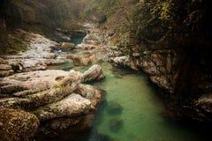 清楚的绿色山河在乔治亚 Martvili峡谷 Okatse峡谷 库存图片