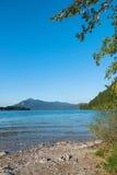 清楚的蓝色山湖walchensee在夏天 免版税图库摄影