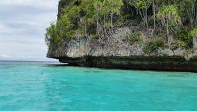 清楚的tosca在珊瑚的成长的白色沙子海滩和绿色森林附近上色了水 图库摄影