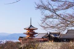 清水寺寺庙的游人在樱桃佐仓开花时间在京都,日本开花 免版税图库摄影