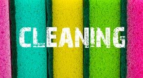 清洁服务概念 海绵与inscript的纹理背景 免版税库存图片