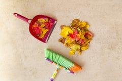 清洗地板从干燥秋叶 免版税库存图片