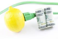 清洗新鲜投资技术 免版税库存图片