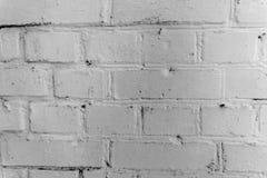 清洗白色砖墙背景 库存照片