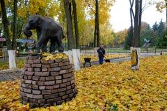 清洗的叶子在动物园里 库存图片