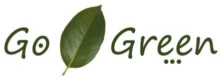 清洗的绿色 免版税图库摄影