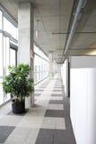 清洗走廊现代办公室 图库摄影