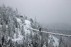 清洗雪从吊桥 图库摄影