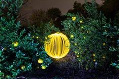 清淡的球和蜜桔 库存照片