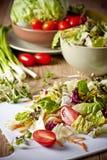 清淡的菜沙拉 免版税库存图片