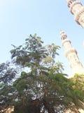 清真寺和叶子 免版税库存照片