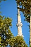 清真寺和尖塔蓝色清真寺 免版税库存照片
