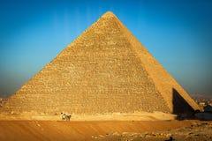 清真寺在埃及风景开罗市 免版税图库摄影