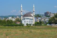 清真寺在村庄 库存照片