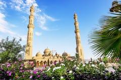 清真寺在洪加达镇在埃及 免版税库存图片