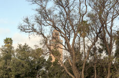 清真寺塔在马拉喀什 库存照片