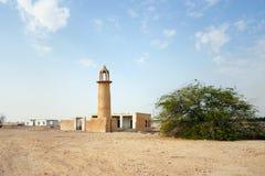 清真寺灌木和废墟 免版税库存照片