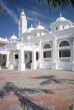 清真寺白色 库存图片