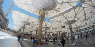 清真寺Nabawi Fisheye视图  库存图片