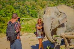 清莱,泰国- 2018年2月01日:关闭摆在接近大象和男朋友采取的美丽的妇女 免版税图库摄影