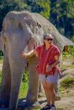 清莱,泰国- 2018年2月01日:未认出的妇女佩带的太阳镜和纵容一头巨大的厚皮类动物大象 图库摄影
