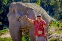 清莱,泰国- 2018年2月01日:未认出的妇女佩带的太阳镜和纵容一头巨大的厚皮类动物大象 库存图片
