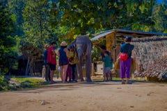 清莱,泰国- 2018年2月01日:美好的室外观点的接近一头巨大的大象的未认出的人在a 免版税图库摄影