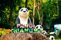 清迈夜有受欢迎的旅游胜地的大熊猫的一徒步旅行队动物园在泰国 免版税库存照片