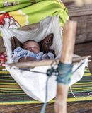 清迈泰国2015年11月:睡觉在摇摆外部房子里的婴孩在长的脖子村庄,清迈,泰国 图库摄影