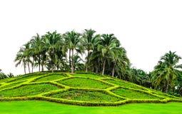 清迈皇家公园的环境美化的庭院 免版税库存图片