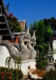 清迈, TH : 在寺庙的双纳卡人龙 库存照片