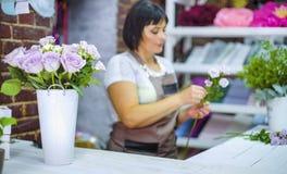 清除和检查白色从干燥瓣的专业卖花人玫瑰分支 图库摄影