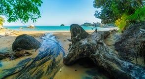 清除在与分裂苹果岩石的海滩,新西兰2 库存照片