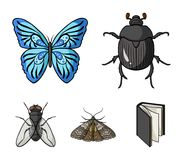 清障车,寄生生物,自然,蝴蝶 昆虫设置了在动画片样式传染媒介标志股票例证网的汇集象 免版税库存图片