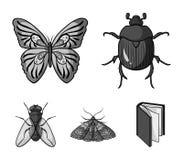 清障车,寄生生物,自然,蝴蝶 昆虫设置了在单色样式传染媒介标志股票例证的汇集象 免版税库存图片