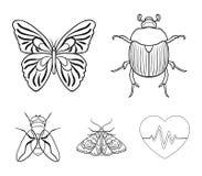 清障车,寄生生物,自然,蝴蝶 昆虫设置了在概述样式传染媒介标志股票例证网的汇集象 免版税库存图片