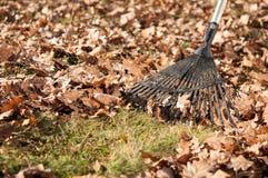 清洗与秋叶犁耙  库存照片