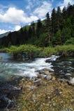 清洗在山的小河在九寨沟风景名胜区名胜 免版税库存照片