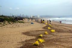 清洗在海滩的市政工作者残骸在德班,南Afri 库存图片
