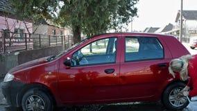 清洗她的汽车的汽车洗涤物/妇女 股票视频